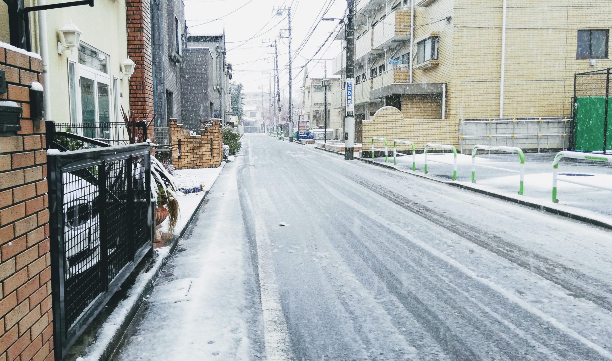 2020年3月20日の雪