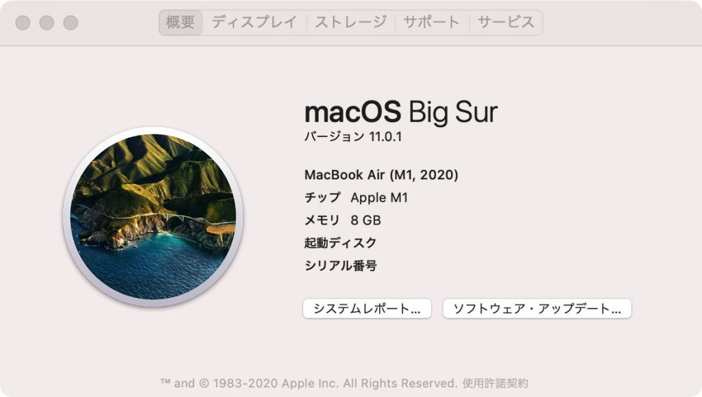 Big Sur 11.0.1
